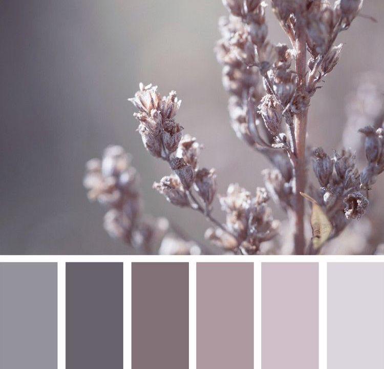 Монохроматические цвета.